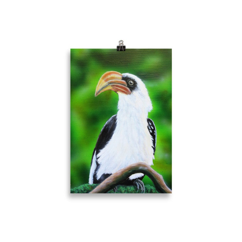 Hornbill Print  Bird Wall Art  Bird Print  Realistic Animal 30×40 cm