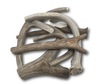 Premium Large Antler - ONE POUND (+/- an ounce) Variety Pack - Top Dog Chews High Quality!