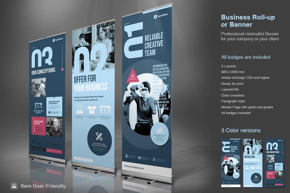 Business Roll-Up Banner InDesign Template