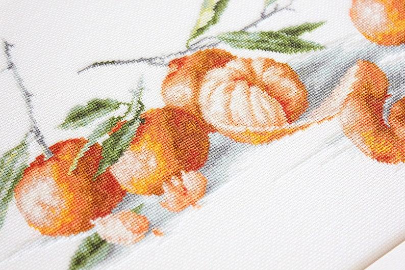 Fruit Embroidery Kit Cross Stitch Fruit Fruit Home Decor Fruit Design Kit Fruit Kit DIY Fruit Embroidery Fruit to Stitch Kit