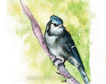 BLUE JAY PRINT - gift ideas, prints, wall art, home decor, nursery art, bedroom decor, bedroom art, office art, office decor, art decor,