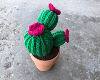 crochet cactus / crocheted cactus / cactus crochet / fake plants / fake flowers / plants that never die