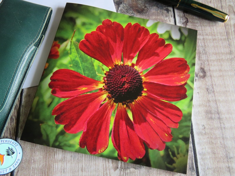 FREE UKPOSTAGE Plastic Free Flower Card Birthday