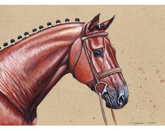 Thoroughbred, 2012