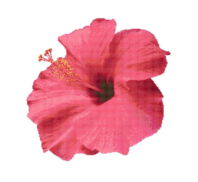 Hibiscus Cross Stitch Pattern Pink Hibiscus Instant Etsy