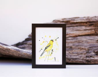 Goldfinch 1 - small
