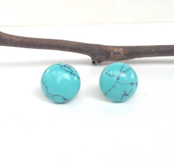 Turquoise Colored Howlite Stone Earrings