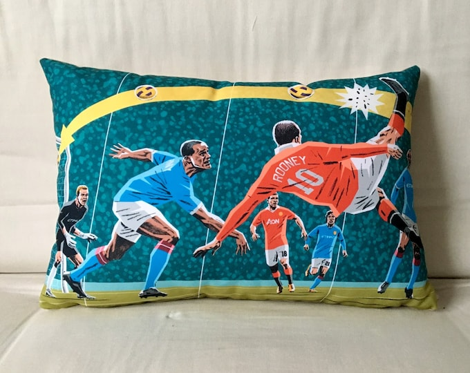 Roooooney cushion