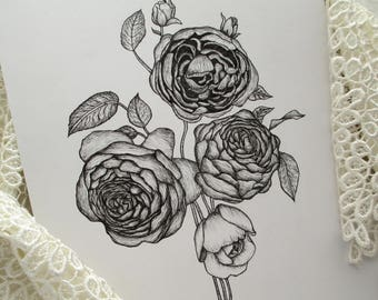 Peony Flower Illustration Giclee Print