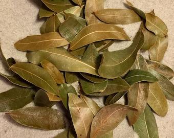 Organic Oak Leaf Litter ~ Hermit Crab Food
