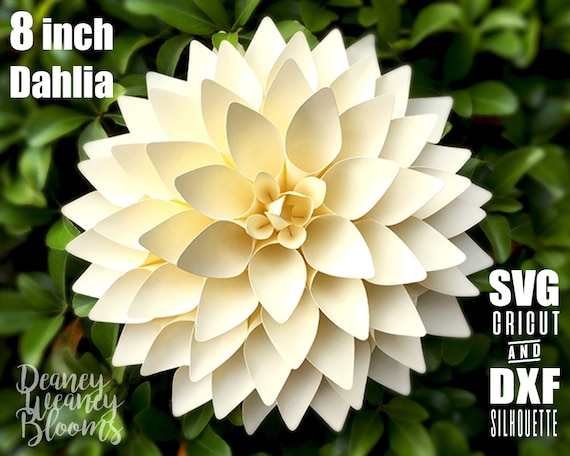 8 Inches Dahlia SVG And DXF Paper Flower Template For Cricut