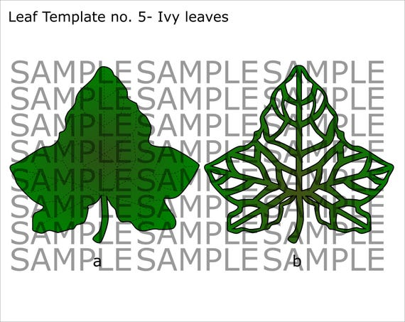 SVG And PDF Printable Digital Leaf Template 5 Ivy 2