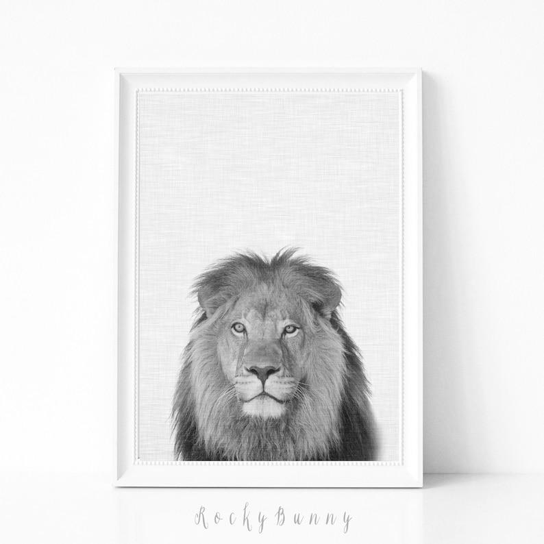 Plakat Lion Czarno Bialy Lew Do Druku Sztuka Scienna Safari Etsy