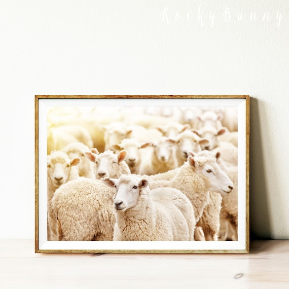 Sheep wall art print sheep printable poster instant download   Etsy
