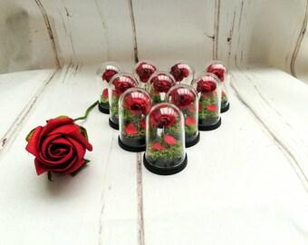 Enchanted Rose Etsy