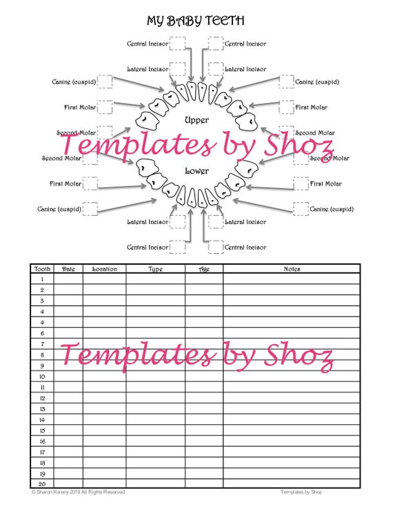 It's just an image of Baby Tooth Chart Printable regarding first tooth age