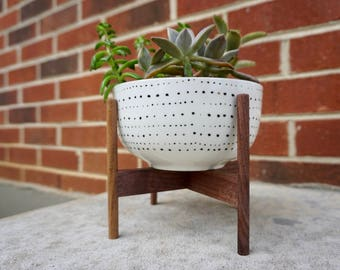 Mid Century Modern Succulent Garden Planter: Plant Stand w/ Pot, Gold Accent or White