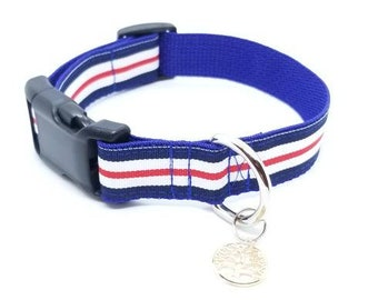 Red, White, and Blue 1 inch Collar/Dog collar/Puppy collar/4th of july/ patriotic/American flag