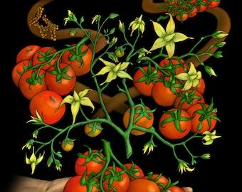 CRISPR Tomatoes - Science Art Print on Canvas (Molecular Biology, Biotechnology, Plants, DNA, Gene Engineering, Cas9, STEM, Teacher, Gift)