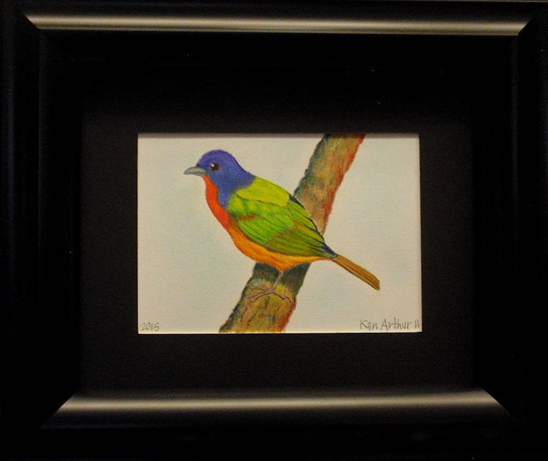 Bird Drawing Sweet Prismacolor Pencil Drawing Nature Wall image 0