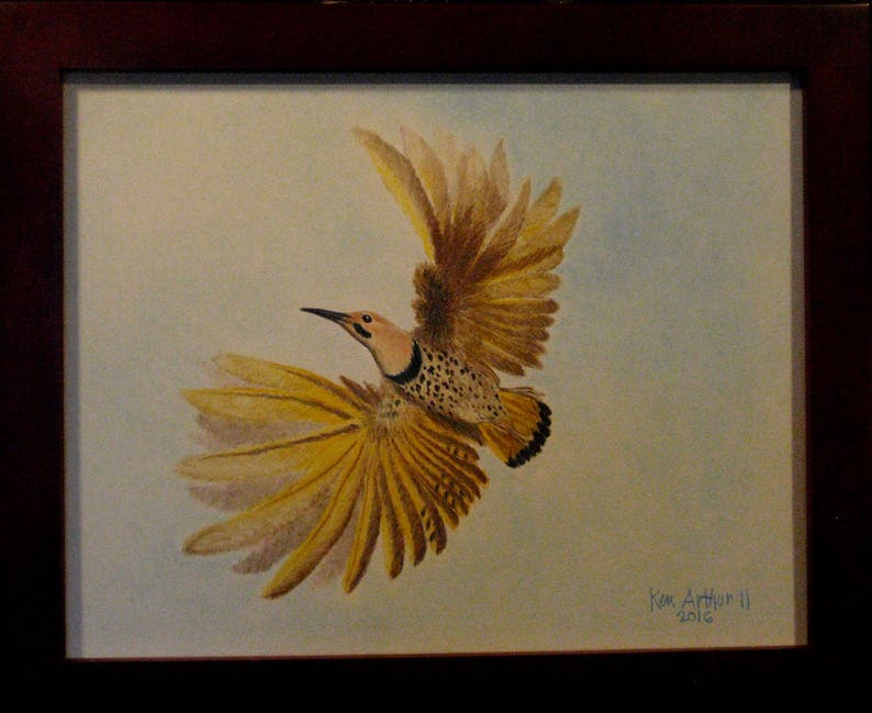Bird Drawing Prismacolor Pencil Drawing Nature Wall Art image 0