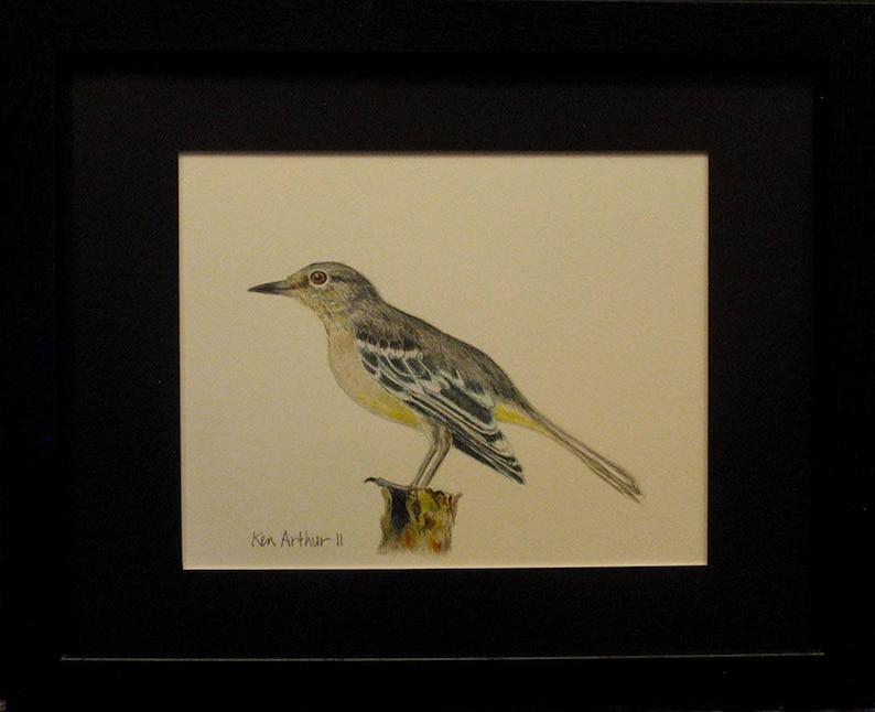 Rysunek Ptak Rysunek Ołówek Prismacolor Natura Wall Art Etsy