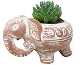 Terracotta Elephant Planter, Terracotta Planter, Terracotta plant pot, ceramic plant pots, Container gardening, Indoor and outdoor planters