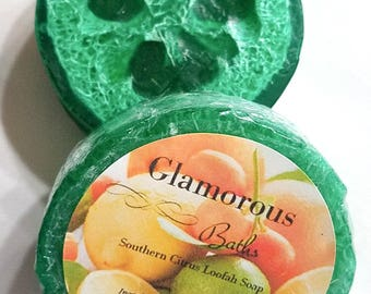 Citrus Loofah Soap, Fruit Soap, Loofa Soap,Green Soap, Luffa Soap