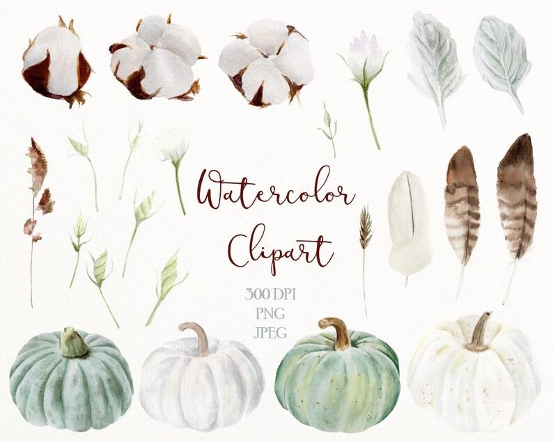 watercolor png Watercolor winter clip art digital download floral watercolor cotton feathers herb #c4 pumpkins digital clipart