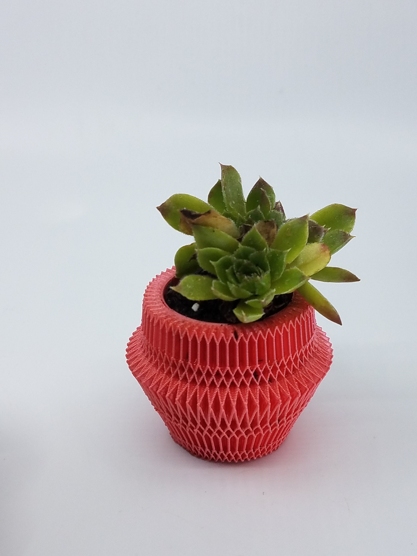 Origami Detail Design Succulent Flower Pot Etsy