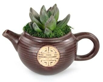 Tea Pot Planter w/ Succulent - Succulent Pot, Tea Pot Planter, Succulent Planter, Succulent with Pot, Teapot gifts, Indoor Plant Gifts