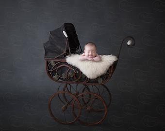 Newborn Digital Backdrop Wicker Carriage Buggy Stroller Vintage Sheep Skin Rustic