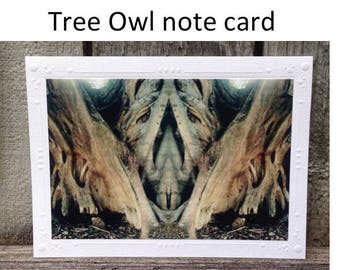 photography notecard,Tree Owl notecard,native owl greeting card,owl blank card,fig tree card,wall art,tree of life card,rustic notecard