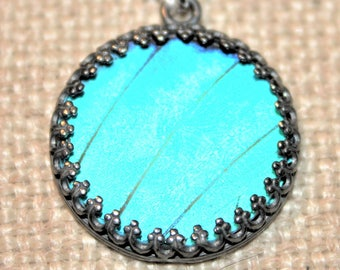 Blue Morpho Butterfly Necklace Size Large