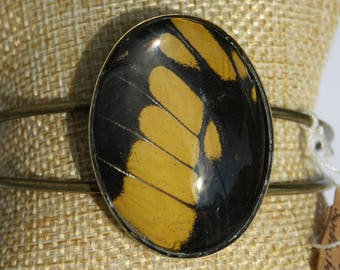 King Swallowtail Butterfly Bangle Bracelet 042