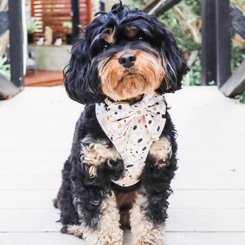 Terrazzo Dog  Chest Harness