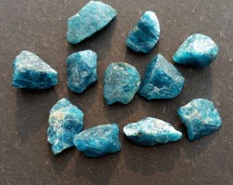 FREE SHIPPING!!! Natural Apatite Gemstones 11 Pcs. approx 48.65 Ct., Raw Apatite, Freeform Shape, LT-22