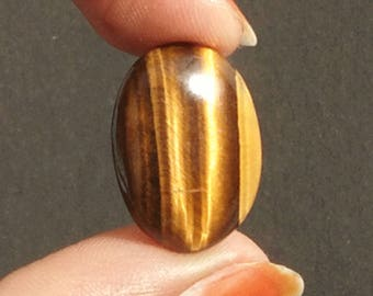 Tiger Eye cabochon 15.15Ct. (22x16x15 mm) Oval Shape Natural Gemstone PA-04