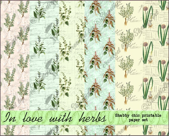 picture about Decorative Paper Printable referred to as Herbs electronic spring sbook paper preset, printable shabby stylish 12x12 attractive paper, classic herb behavior, spring heritage wallpaper
