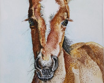 Watercolor and Ink FOAL