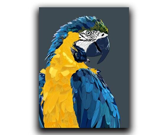 Parrot Print Bird Wall Art Macaw Printable Wall Art Beak   Etsy