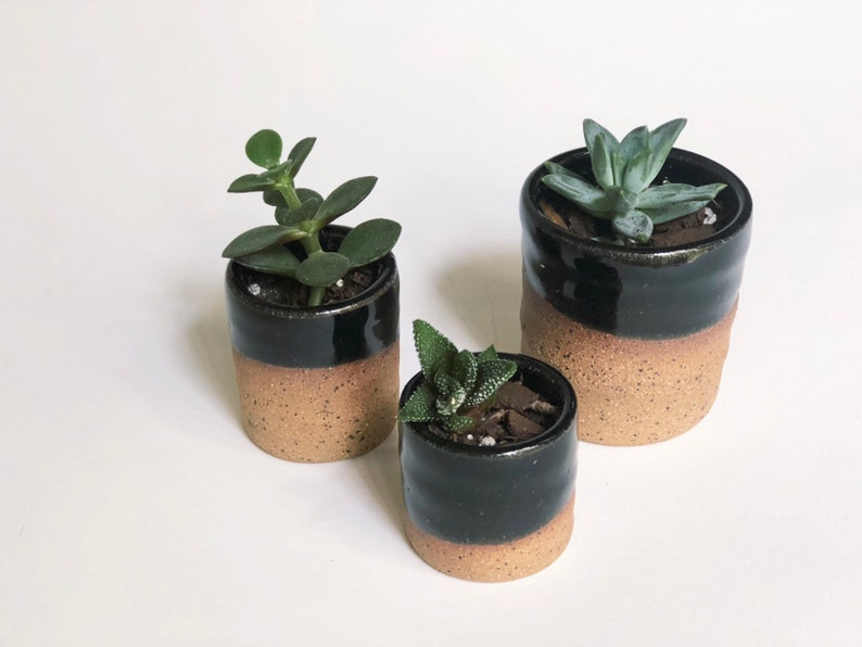 Black Speckled Succulent Pot / Handmade Pottery / Mini Planter image 0