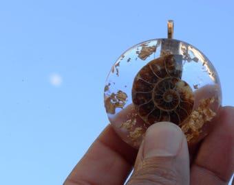 Ammonite Pendants