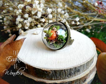 Pumpking ring, terrarium ring, botanical ring, fantasy ring, vintage jewelry, floral jewelry, vintage ring, dried flowers ring, jewellery