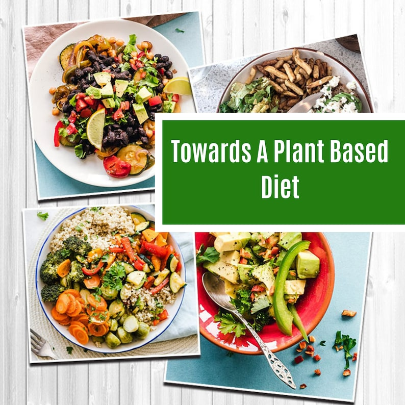 Towards The Plant Based Lifestyle