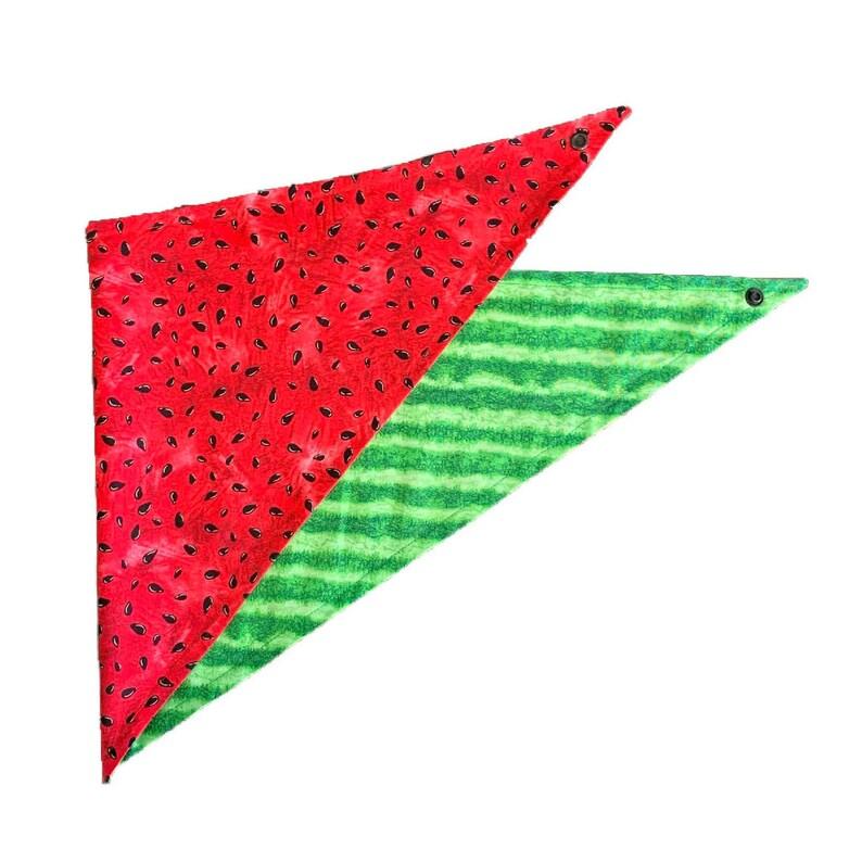 Watermelon Reversible Dog Bandana