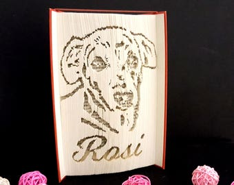 Notebook, folded book, gift idea, home accessories, Animal portrait