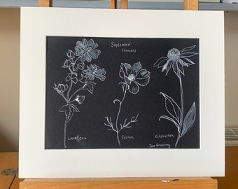 Indian ink Drawing of Garden Flowers, in mount