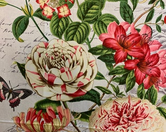 Wilmington Prints Le Bouquet Green Floral Beautiful 68470-177 Toile Anne Rowan By the Yard