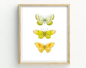 Yellow Butterfly Print | Butterfly Print | Butterfly Picture | Butterflies | Butterfly Pattern | Butterfly Wall Art | Butterfly Painting
